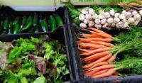 Idée de Sortie Sainte Radegonde La Ferme d'Agen (GAEC) - Récolte à la ferme