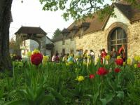 Evenement Marcilly le Hayer Week-end Feldenkrais