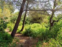 GR2013 Aix en Provence