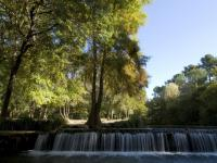 L-Arc Aix en Provence