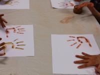Muséum d´Histoire Naturelle Aix en Provence