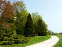 Idée de Sortie Juzanvigny Arboretum de Brienne-le-Château