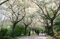 Jardins de Valloires Somme
