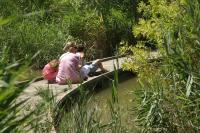 Sentier découverte des Cabanes des Marais du Vigueirat Arles