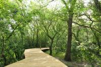 Sentier ethnobotanique des Marais du Vigueirat Arles