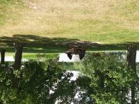 Idée de Sortie Vic sur Aisne Aire de pique-nique au bord de l'étang d'Attichy
