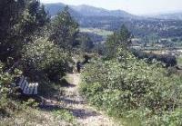 Idée de Sortie Carnoux en Provence Base nature de la Coueste
