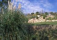 Idée de Sortie Aubagne Jardin Palissy