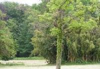 Idée de Sortie Aubagne Parc Jean Moulin