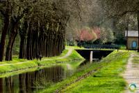 Idée de Sortie Concressault Sente Bleue : balade le long du canal Sans Queue Ni Tête