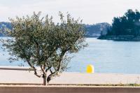 Parc-Naturel-Regional-de-la-Sainte-Baume Auriol