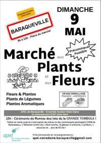 Evenement Anglars Saint Félix Marché aux plants et aux fleurs