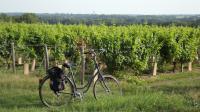 Idée de Sortie Sury ès Bois Location de vélo au Domaine des Médards