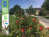 Idée de Sortie Rignac Aveyron Conservatoire Régional du Châtaignier
