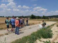 Idée de Sortie Belleau Visite guidée Sur les traces des combats du Bois de Belleau