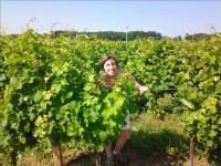 Idée de Sortie Saint Laurent des Vignes Vititourisme