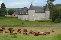 Idée de Sortie Saint Antoine Château d'Entraygues