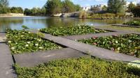 Jardin botanique et ses serres de Bordeaux Bastide Bordeaux