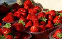 Idée de Sortie Coulommes et Marqueny Aux fraises de Bourcq