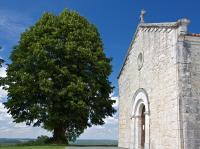 Idée de Sortie Château l'Évêque Eglise Saint-Mandé-et-Notre-Dame