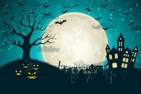 Grand-jeu-d-Halloween-a-Terres-d-oiseaux Braud et Saint Louis