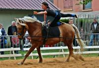 Idée de Sortie Poligny Centre equestre Chant'équi
