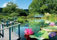 Idée de Sortie Groléjac Les Jardins d'Eau