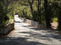 Idée de Sortie Carnoux en Provence Le vignoble de la baie de Cassis