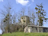 Idée de Sortie Rimons Boucle du Moulin