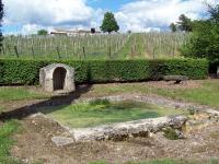 Idée de Sortie Rimons Boucle de l'étang de Caumont