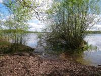Idée de Sortie Clémont Parc Naturel Départemental - L'étang du puits
