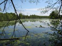 Ecopole-du-Forez Chambéon