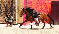 Evenement Loir et Cher Spectacle chevaux et rapaces au château de Chambord - François 1er, le Roi-Chevalier