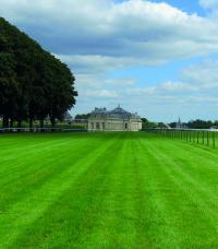Idée de Sortie Chantilly Visite guidée L'incroyable histoire de la pelouse de Chantilly