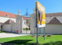 Idée de Sortie Prusly sur Ource Musée du Pays Châtillonnais - Trésor de Vix