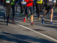 Evenement Loir et Cher Marathon de Cheverny