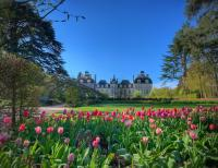 Jardins de Cheverny Loir et Cher