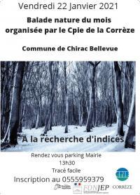 Evenement Saint Sulpice les Bois Balade nature 'A la recherche d'indices'