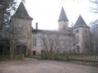 Idée de Sortie Cormoranche sur Saône Château d'Estours
