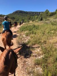 Randonnées équestres dans le massif de la Sainte-Baume Cuges les Pins