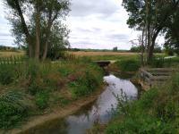 Idée de Sortie Bernon Site d'observation de la nature de Davrey