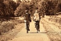 Idée de Sortie Petit Mesnil Location de vélo - La Palmeraie