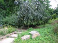 Idée de Sortie Daix Parc des Carrières Bacquin