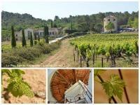 Idée de Sortie Le Puy Sainte Réparade Domaine Tour Campanets