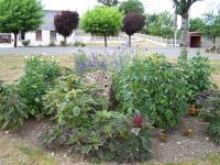 Idée de Sortie Grandchamp DRAIZE, Village Fleuri 1 Fleur