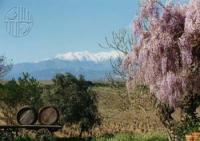 Domaine Sarda Malet Perpignan