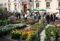 Les-Floralies Marignane
