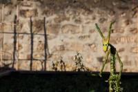 Evenement Sermoise Exposition à Anizy : Les Sylvestres et Cie