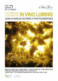 Evenement Baulne en Brie Exposition à la MAFA In Vino Luminis de Jean-Charles Gutner