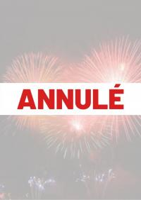 Evenement Dommartin le Coq Feu d'Artifice et Moules Frites